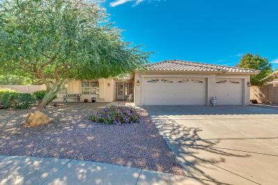 Mesa Single Family Home For Sale: 6039 E Portia Circle
