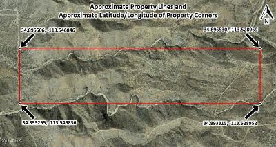 Wikieup AZ Residential Lots & Land For Sale: $44,800
