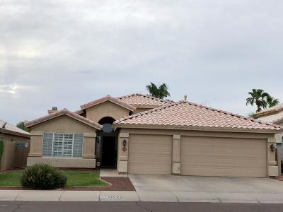 Phoenix Single Family Home For Sale: 14202 S 44th Street