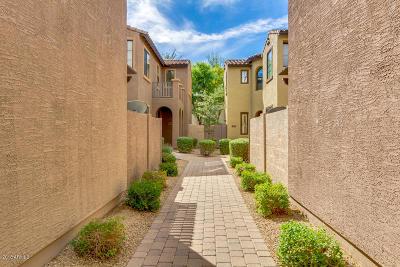 Phoenix Single Family Home For Sale: 2423 W Dusty Wren Drive