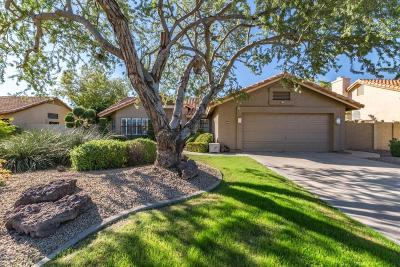 Tempe Single Family Home For Sale: 319 W Knox Road