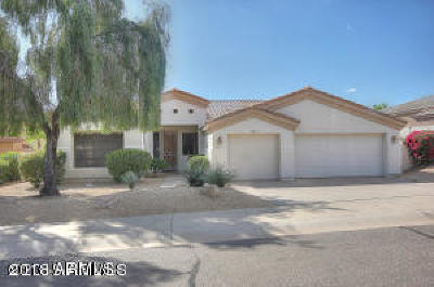 Fountain Hills Single Family Home For Sale: 13012 N Ryan Way N