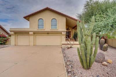 Phoenix Single Family Home For Sale: 4224 E Tano Street