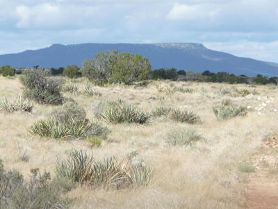 Heber AZ Residential Lots & Land For Sale: $16,900