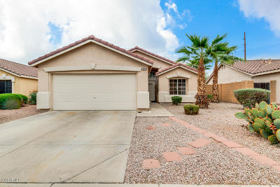 Chandler Single Family Home For Sale: 2310 E Derringer Way
