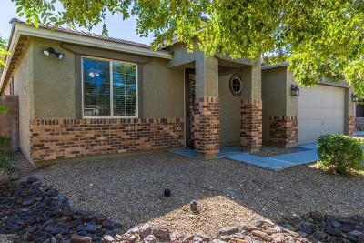 Peoria Single Family Home For Sale: 9243 W Hedge Hog Place