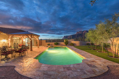 Gold Canyon Single Family Home For Sale: 9694 E Saguaro Summit Court