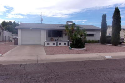 Apache Junction Single Family Home For Sale: 1132 S Ocotillo Drive