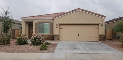 Phoenix Single Family Home For Sale: 8130 W Pueblo Avenue