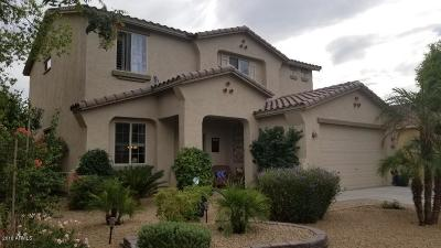 Goodyear Single Family Home For Sale: 17561 W Morning Glory Street