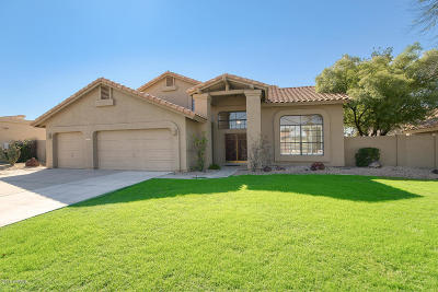 Tempe Single Family Home For Sale: 151 E Jeanine Drive