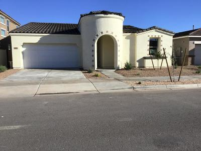 Queen Creek Single Family Home For Sale: 22460 E Silver Creek Lane
