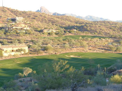 Fountain Hills Residential Lots & Land For Sale: 9434 N Desert Wash Trail