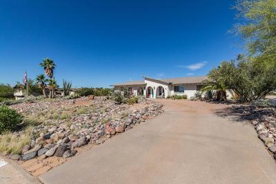 Fountain Hills Single Family Home For Sale: 17022 E Rand Drive