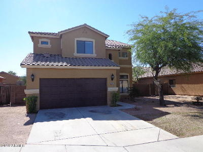 Phoenix Single Family Home For Sale: 2535 W Burgess Lane