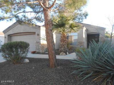 Phoenix Single Family Home For Sale: 2213 E Branham Lane