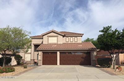 Gold Canyon Single Family Home For Sale: 6880 E Las Animas Trail