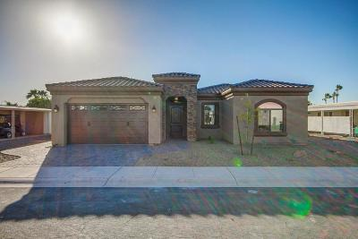 Mesa Single Family Home For Sale: 2454 N Snead Drive