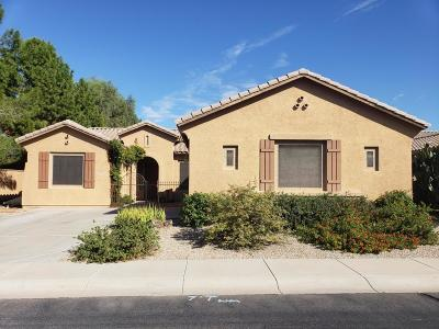 Chandler AZ Single Family Home For Sale: $392,000