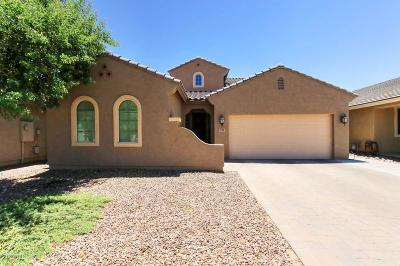 San Tan Valley Single Family Home For Sale: 291 E Canyon Rock Road
