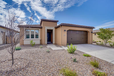 San Tan Valley Single Family Home For Sale: 263 E Alcatara Avenue