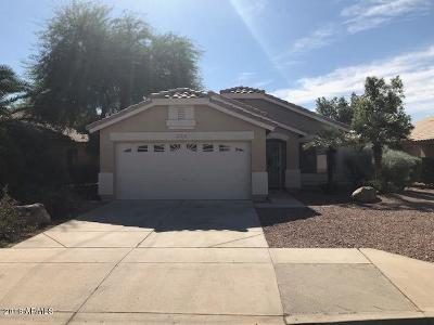 Prescott, Prescott Valley, Glendale, Phoenix, Surprise, Anthem, Avondale, Chandler, Goodyear, Litchfield Park, Mesa, Peoria, Scottsdale Single Family Home For Sale: 10841 E Dragoon Avenue