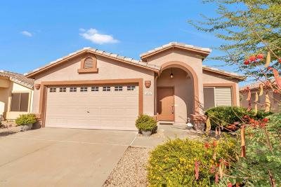 Gold Canyon AZ Rental For Rent: $1,300