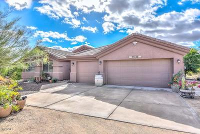 Litchfield Park Single Family Home For Sale: 20005 W Mariposa Drive