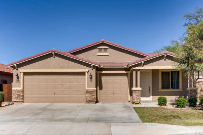 Peoria Single Family Home For Sale: 9134 W Hedge Hog Place