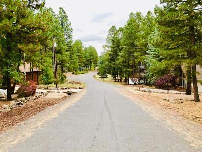 Residential Lots & Land For Sale: 135 Bison Drive