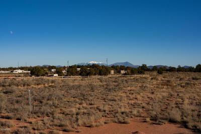 Residential Lots & Land For Sale: 238 E Coronado Drive