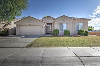 Chandler Single Family Home For Sale: 915 W Aloe Place