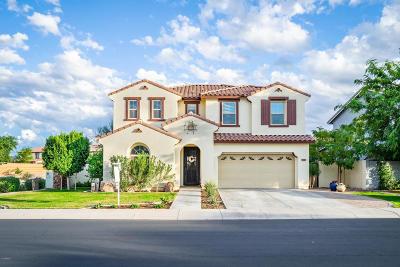 Mesa Single Family Home For Sale: 3521 N Alba Circle