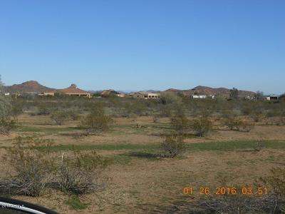 Surprise Residential Lots & Land For Sale: 15301 W Desert Vista Trail