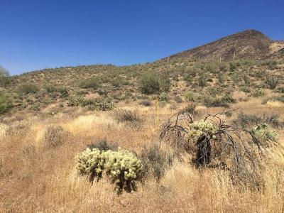 New River Residential Lots & Land For Sale: 425xx N 18th Street