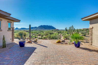 Scottsdale Single Family Home For Sale: 14308 E Dove Valley Road
