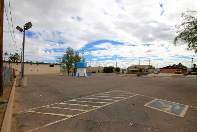 Phoenix Residential Lots & Land For Sale: 802 N 15th Avenue