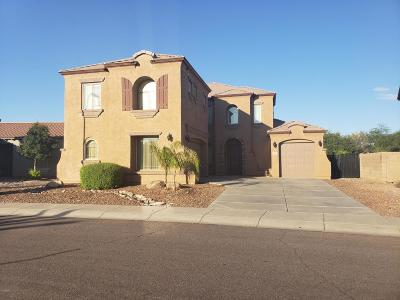 Phoenix Rental For Rent: 9230 W Rascon Loop