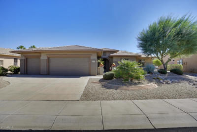 Surprise Single Family Home For Sale: 20481 N Enchantment Drive