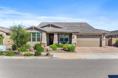 Queen Creek Single Family Home For Sale: 22072 E Estrella Road