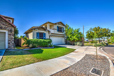 Phoenix Single Family Home For Sale: 5208 S 22nd Way