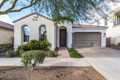 Mesa Single Family Home For Sale: 10704 E Pivitol Avenue
