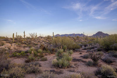 Scottsdale Residential Lots & Land For Sale: 28787 N 114th Street