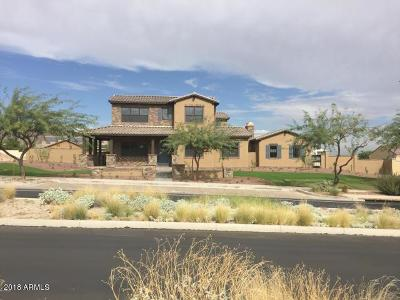 Verrado Single Family Home For Sale: 21272 W Sunrise Lane