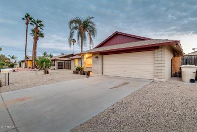 Glendale Single Family Home For Sale: 5519 W Tierra Buena Lane
