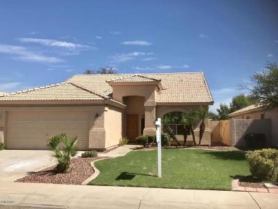 Chandler Single Family Home For Sale: 1964 E Tyson Pl Place