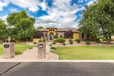 Gilbert Single Family Home For Sale: 2718 E Lines Lane