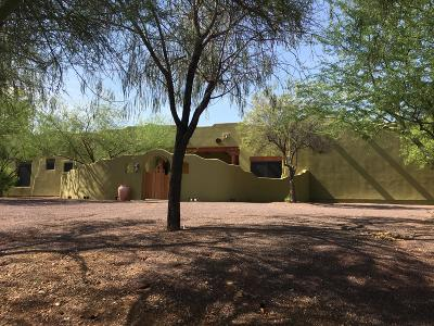 Phoenix Single Family Home For Sale: 42123 N 3rd Street