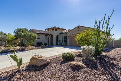 Peoria AZ Single Family Home For Sale: $469,900