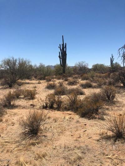 Scottsdale Residential Lots & Land For Sale: Lone Mt & 161 St Place